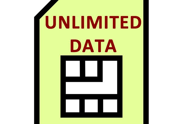 Unlimited Data Fixed IP SIM Card